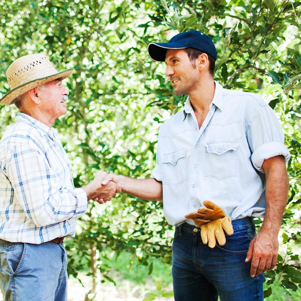 Farmers Handshake